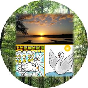 «L'éveil du vilain petit canard», re-connexion et re-création 16-18/11/18