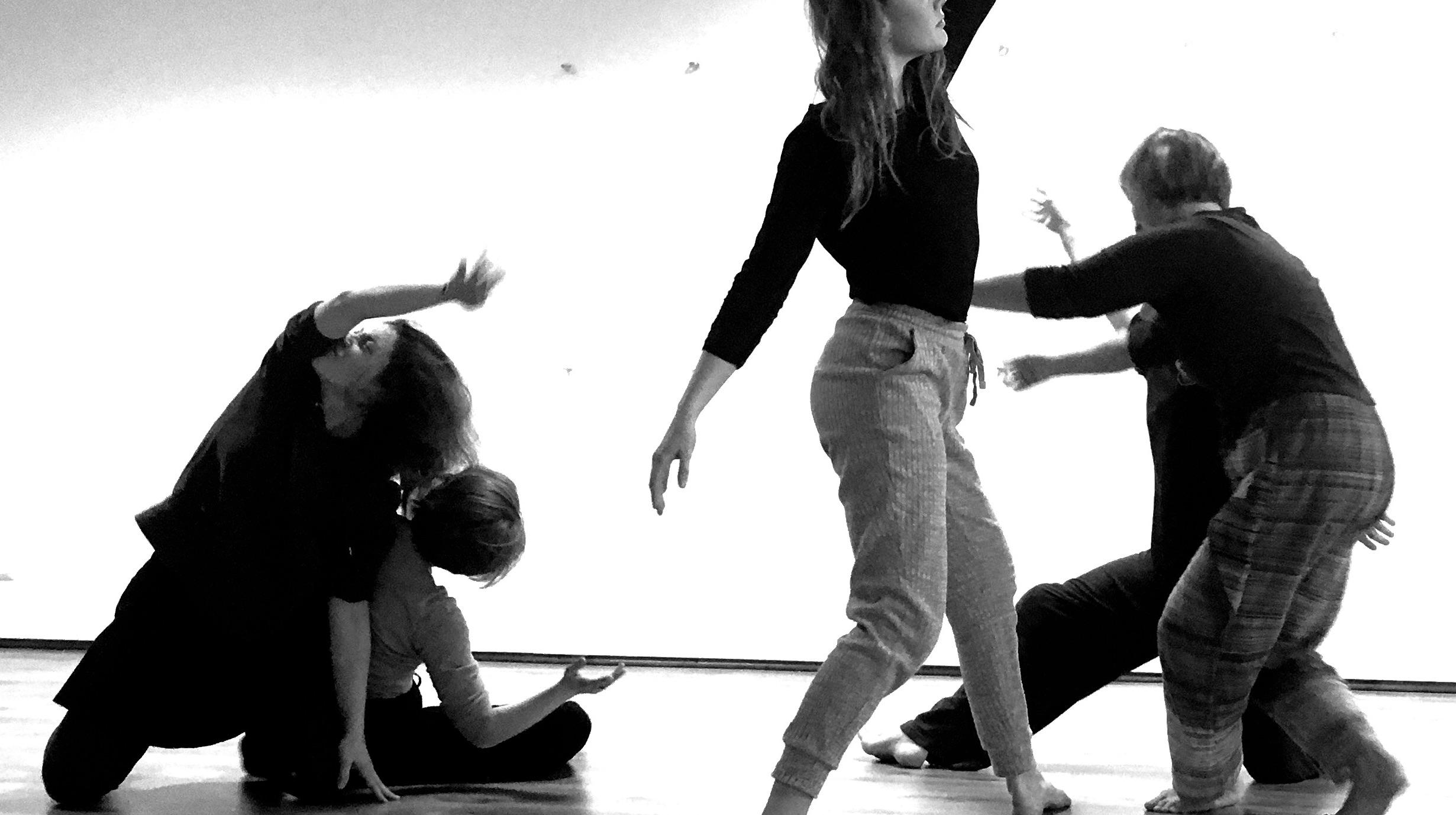 Danse contact sensorielle 16/04